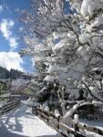 nevicata a Pozza di Fassa